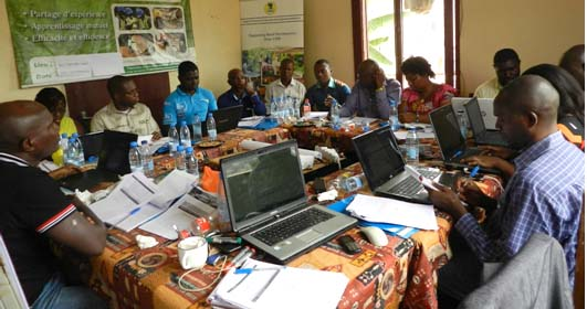 9ème Réunion de coordination de l'Observation Indépendante Externe des forêts au Cameroun