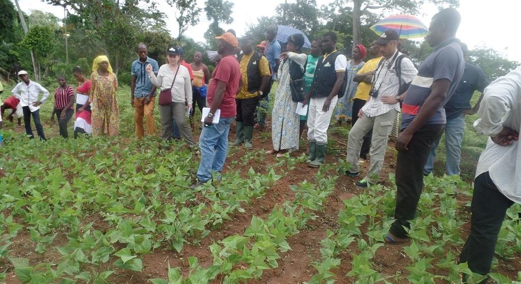 Visite de Pain pour le Monde dans les villages de l'Est Cameroun