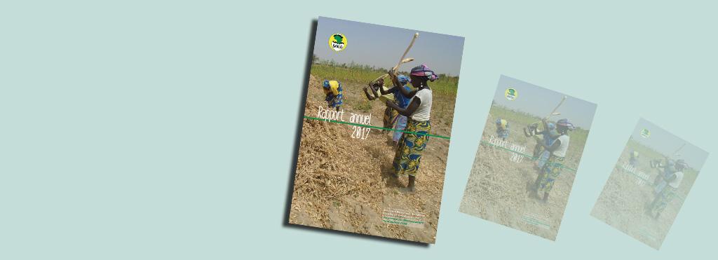 Rapport annuel 2017 du SAILD