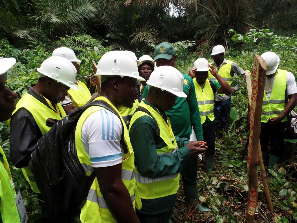 Des forêts communautaires qui travaillent en toute légalité, c'est possible!