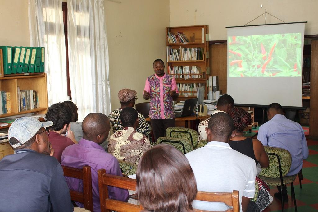 Des séances de projection vidéo pour vulgariser l'information agropastorale