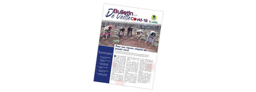 Bulletin de veille COVID-19