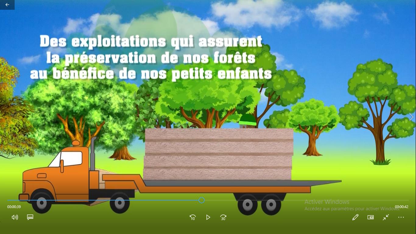 Les effets bénéfiques de l'exploitation légale du bois des forêts communautaires
